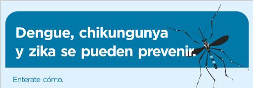 Dengue, Chikungunya y Zika se pueden prevenir